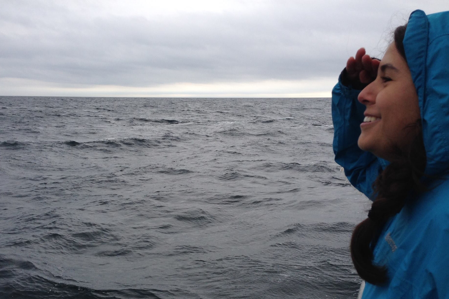 Sea-king Adventure: Meet Amanda | College Compass